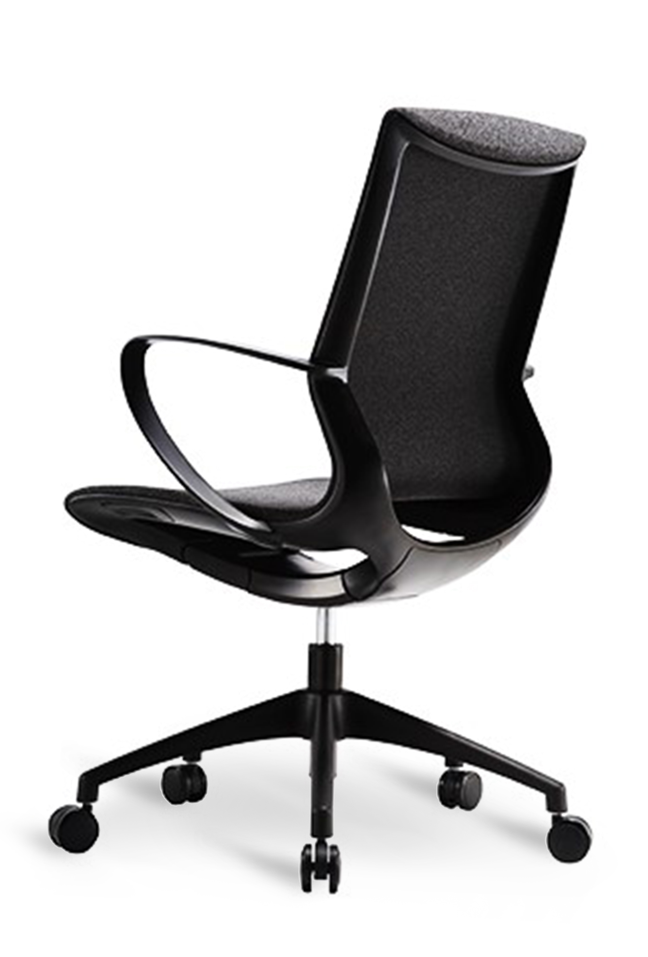 WS - L19 multipurpose chair - Black (Back angle)
