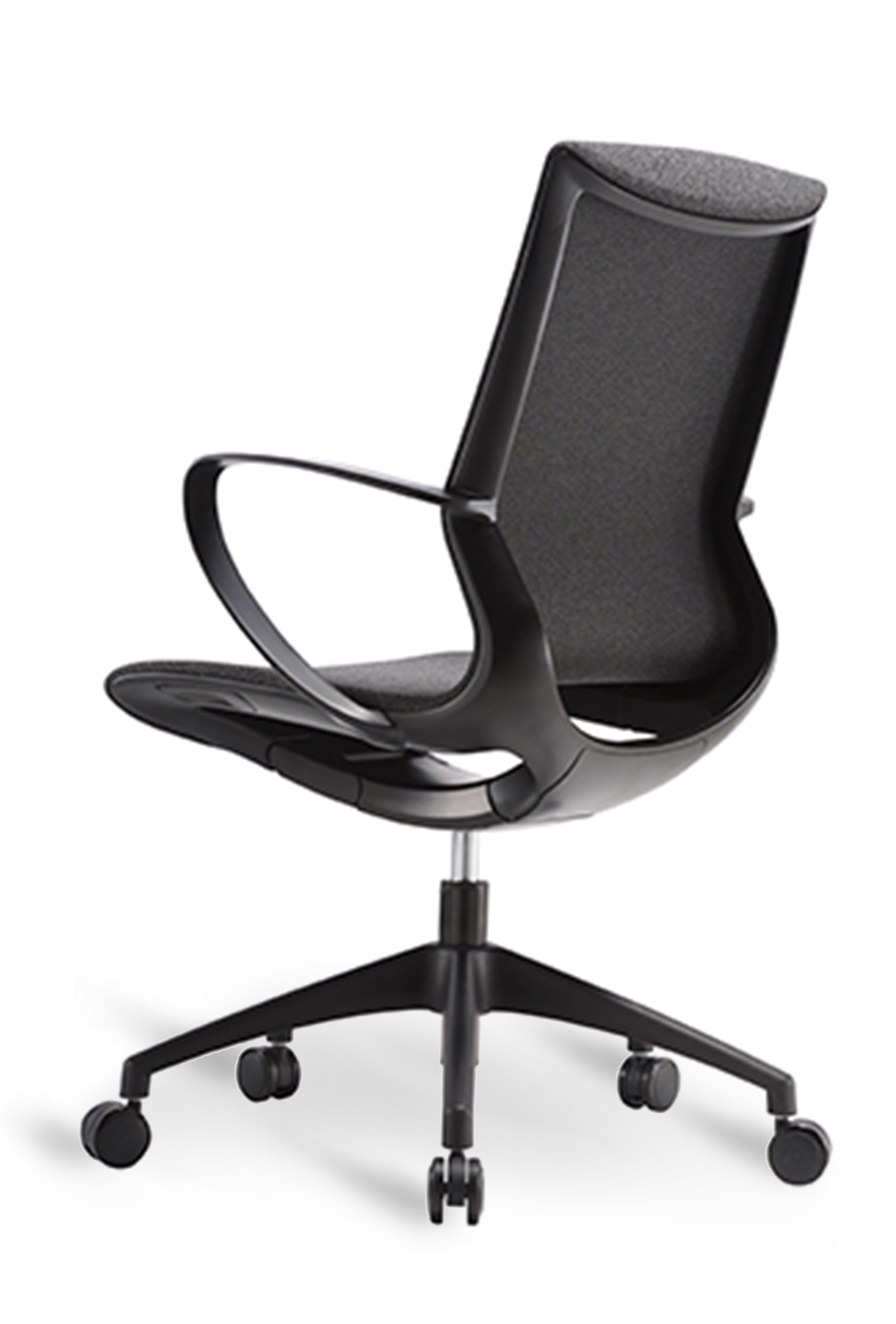 WS - L19 multipurpose chair - Dark grey (Back angle)